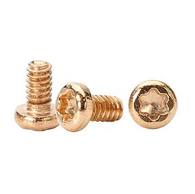 Golden Screw, Small Pan Head Torx Screws