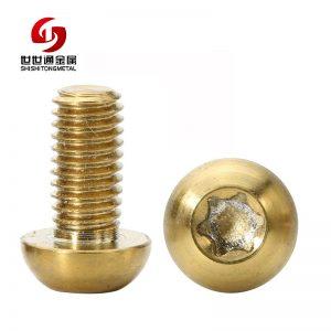 titanium torx screw