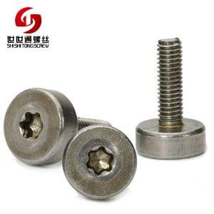 Stainless Steel Machine Thread Six-lobe Screw