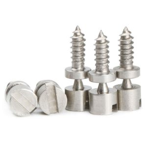 stainless-steel-special-screw