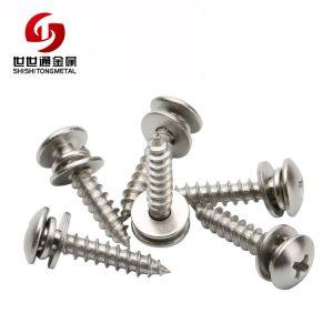 Combo Screw, Stainless Steel Phillips Screw