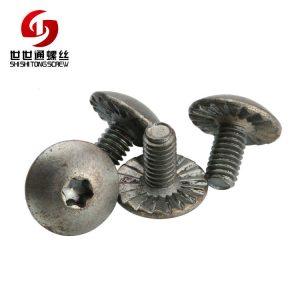 truss torx screw