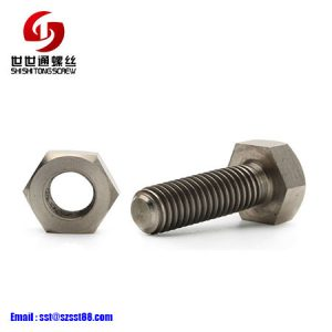 Stainless Steel Screws And Nuts