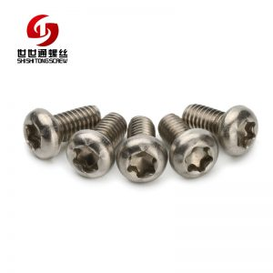 round head stainless steel screw