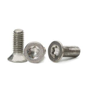 stainless steel torx screw