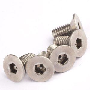 anti-theft screw