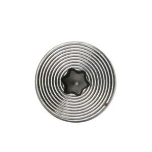 stainless torx screws
