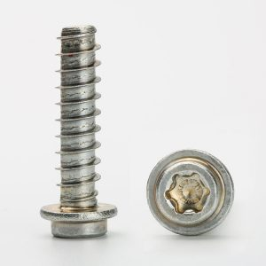 stainless steel torx head screws