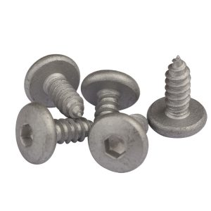 pan head socket screw