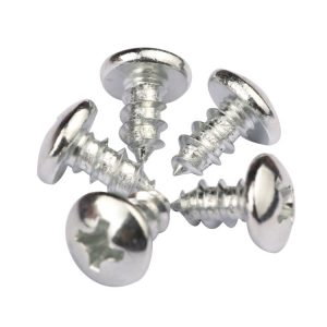 Phillips Head Self Tapping Screws Supplier | Shi Shi Tong